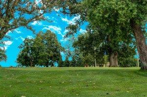 #4 Green - Atlantic Golf & Country Club