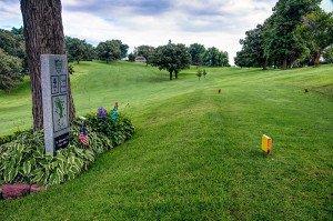 #4 Ladies Tee - Atlantic Golf & Country Club