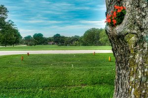 #5 Ladies Tee - Atlantic Golf & Country Club