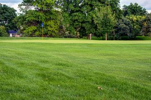 #7 Green - Atlantic Golf & Country Club