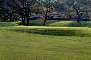#8 Green - Atlantic Golf & Country Club
